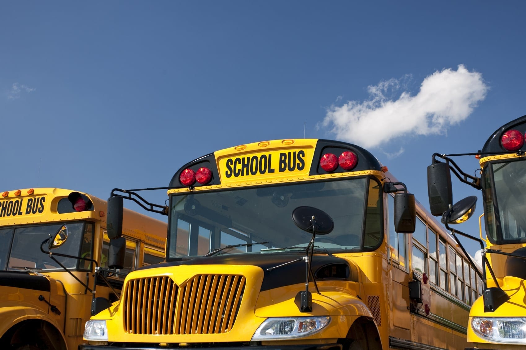 Line Of Parked Yellow School Buses Stock Photo