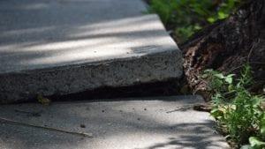 Cracked and Broken Sidewalk Stock Photo