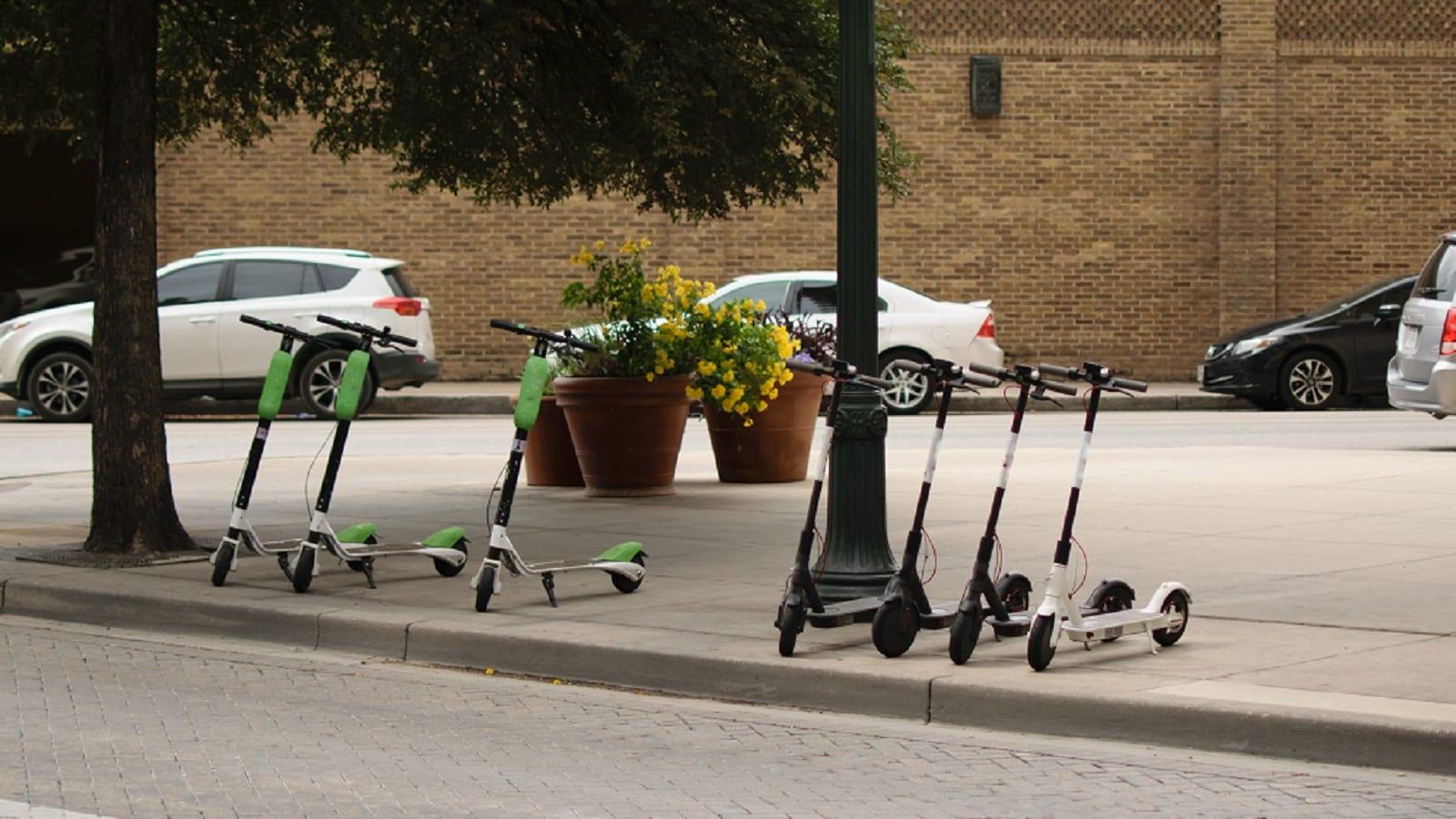 Parked Electric Bird Scooters Stock Photo